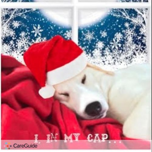 Pet Care Job Elle Gee's Profile Picture