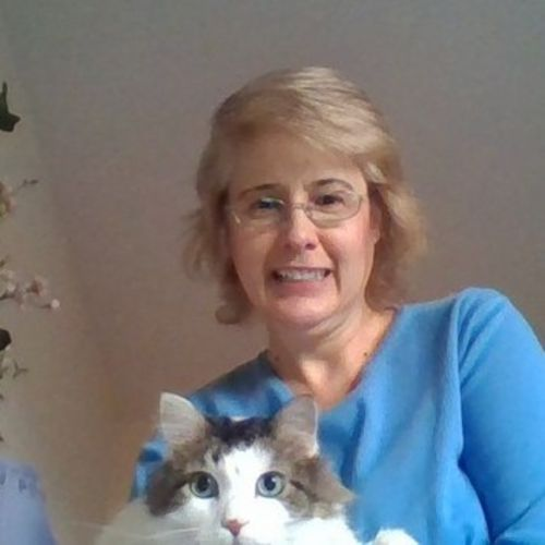 Housekeeper Provider Diane S's Profile Picture