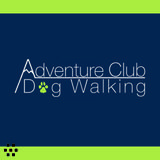 Dog Walker in Surrey