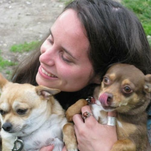 Pet Care Provider Krysteen P's Profile Picture