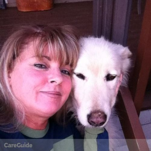 Pet Care Provider Dondi Gukeisen's Profile Picture