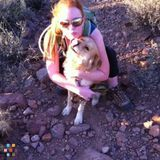 Babysitter, Nanny in Apache Junction