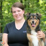 Dog Walker, Pet Sitter in Lexington