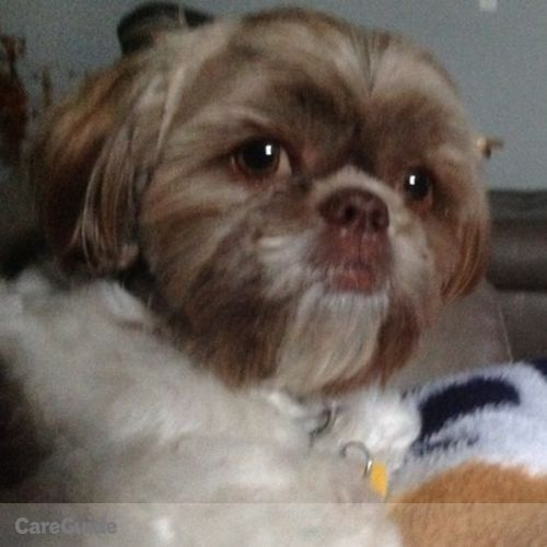 Pet Care Job Barb Pace's Profile Picture