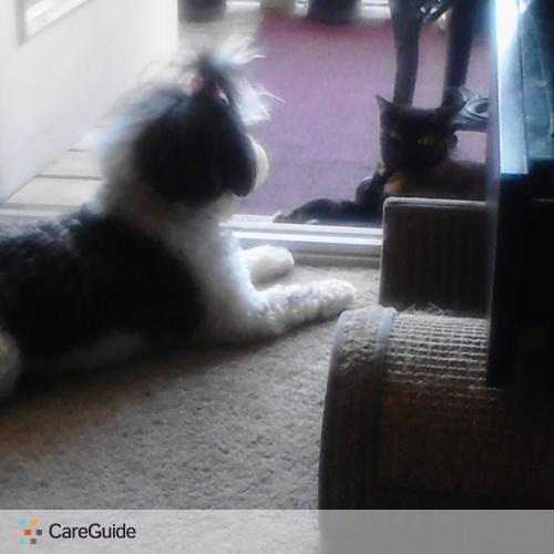 House Sitter Provider Katt N's Profile Picture