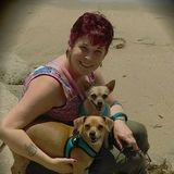 Searching for an Animal Caregiver Job in Las Vegas, Nevada