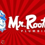Mr Rooter P