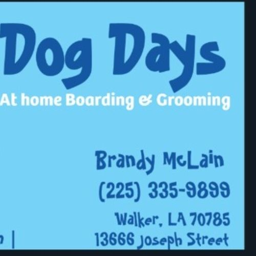 Pet Care Provider Brandy M Gallery Image 3