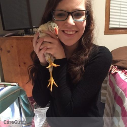 House Sitter Provider Emily N's Profile Picture