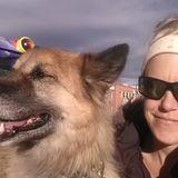 Woodland Park Dog Walker Seeking Work