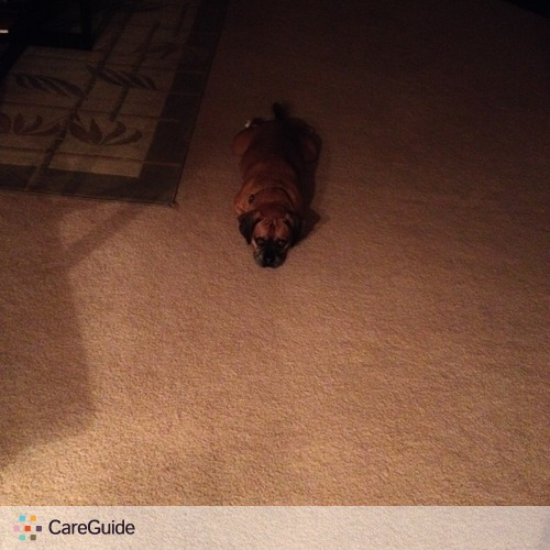 Pet Care Provider Mackenzi Green's Profile Picture