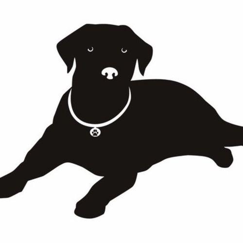 Pet Care Provider Tom B's Profile Picture