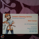Housekeeper, House Sitter in Sumter