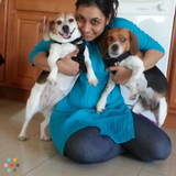 Pet Sitter in Kearny