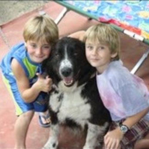 Interested In Edmonton Animal Caregiver Opportunity