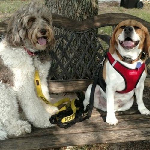Pet Care Provider Lori C Gallery Image 1