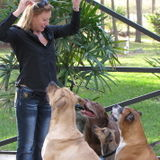 Need help with obedience training for your dog?