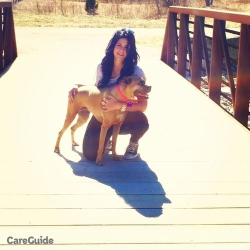 Pet Care Provider Sophia Domenichiello's Profile Picture
