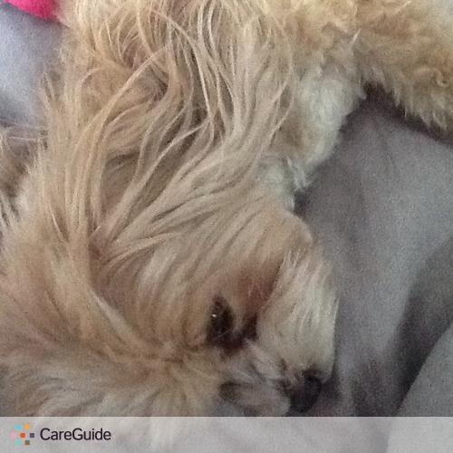 Pet Care Provider Sara Hesskew's Profile Picture