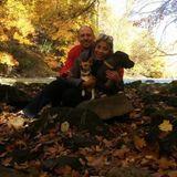 Dog Walker Job, Pet Sitter Job in Slippery Rock