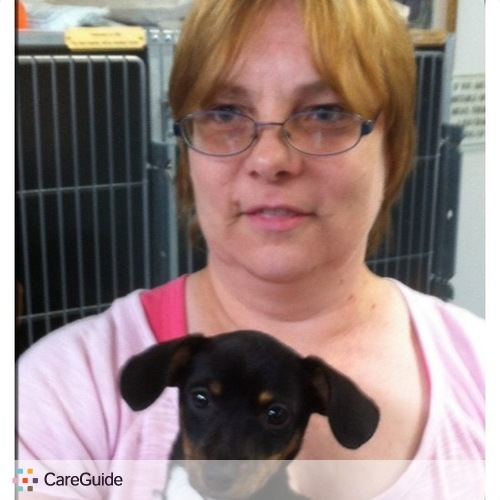 Pet Care Provider Kris Bright's Profile Picture