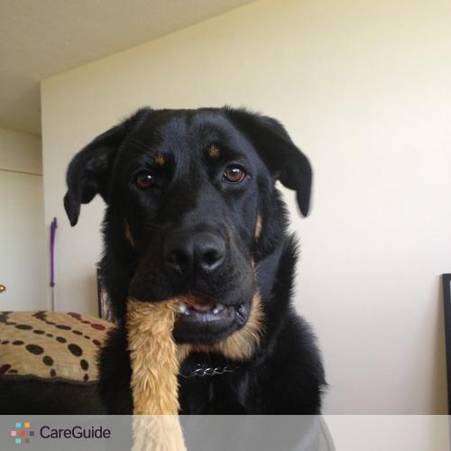 Pet Care Provider Ian Fox's Profile Picture