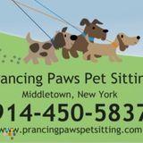 Dog Walker, Pet Sitter in Middletown
