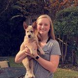 Seeking a Dog Walker Job in Huntsville to The Woodlands Texas.