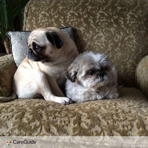 Pet Care Provider Sheri R's Profile Picture