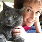 Available: Reliable Pet Care Provider in Sterling, Ashburn, Leesburg, Reston, and Herndon, VA
