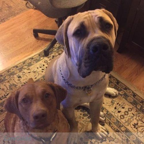 Pet Care Job Shanna Baseman's Profile Picture