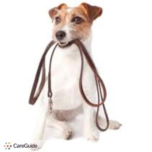Pet Care Provider Benjamin H's Profile Picture