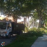 Landscaper in West Palm Beach