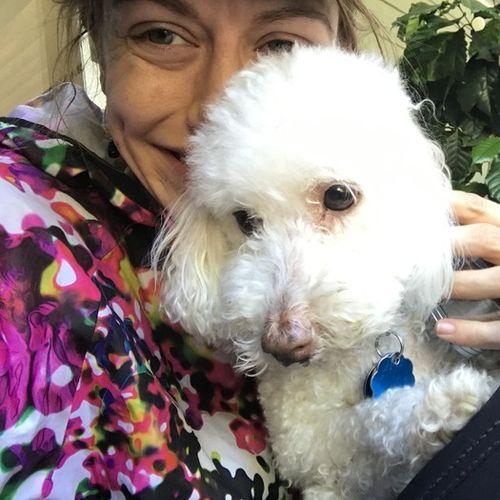 Pet Care Provider Michelle Devlaeminck's Profile Picture