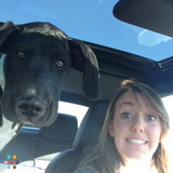 Dog Walker, Pet Sitter in Manahawkin