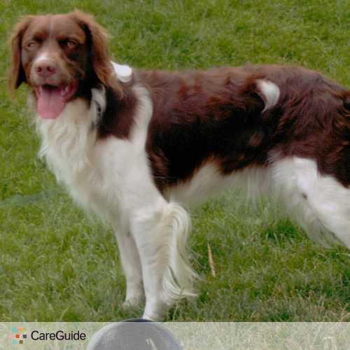 Pet Care Provider Amy Copeland's Profile Picture