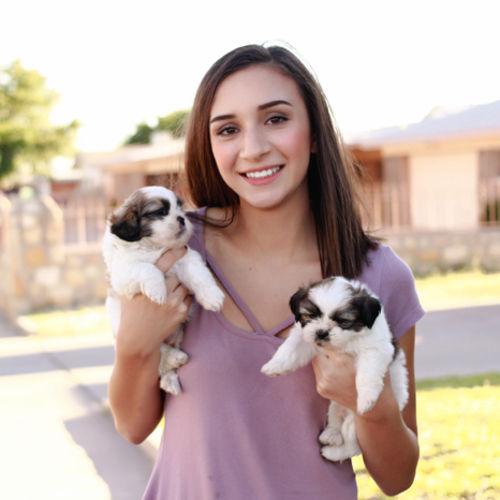 Pet Care Provider Mariel Rascon's Profile Picture
