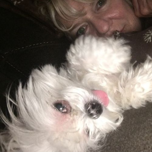 Pet Care Provider Summer Krause's Profile Picture
