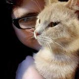 Indiana, Pennsylvania Pet Carer