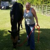 Dedicated Animal Caregiver in Camp Verde, Arizona