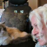 Cat Whisperer For Hire