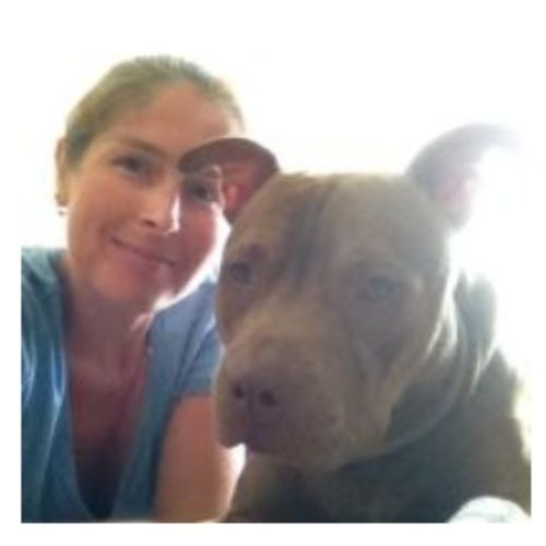 House Sitter Provider Sarah Folks's Profile Picture