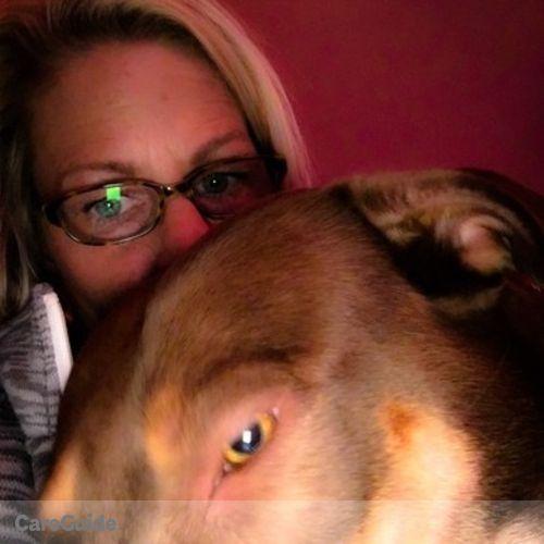 Pet Care Provider Bev N's Profile Picture
