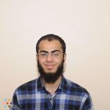 Experienced Math and Science Tutor - Grade 1 - 12 Brampton/Skype