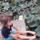 Babysitter, Daycare Provider in Toledo