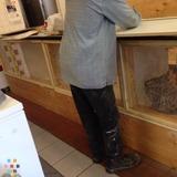Handyman in Anchorage