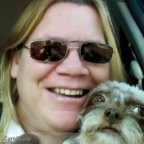 Pet Care Provider Tina Noone's Profile Picture