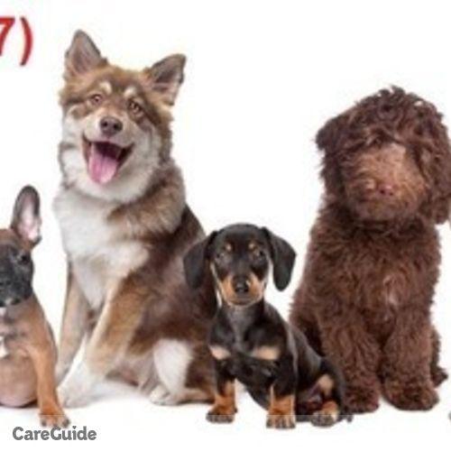 Pet Care Provider Chris Martinez's Profile Picture