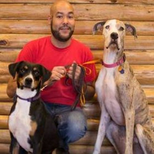 Pet Care Provider Jarod S's Profile Picture