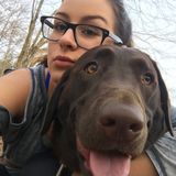 Responsible Dog Lover Looking to Help Out!